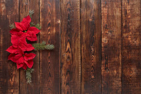 Red Poinsettia flowers (Euphorbia Pulcherrima) and fir branch on brown wooden background. Christmas and New Year ornaments. Greeting card with copy space. Top view. Christmas flower 免版税图像