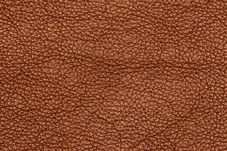 fetishism: leather background or texture