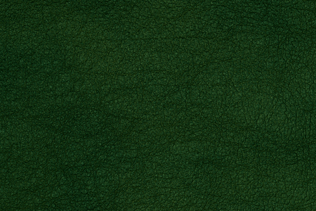 leather texture: Green Leather Texture Stock Photo