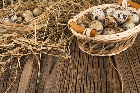 huevos de codorniz: huevos de codorniz crudos Foto de archivo