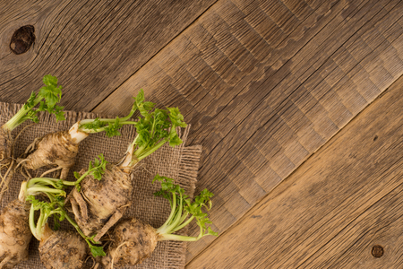 celery root: Celery root on the old wooden background