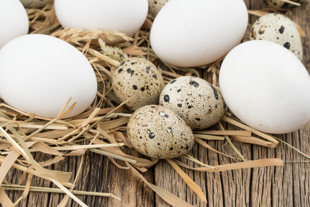 Chicken and quail eggs in the straw and wooden table. Selective focus. Stock Photo