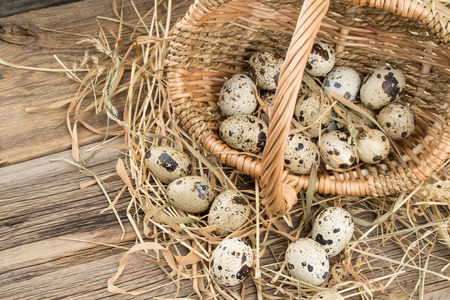 Quail eggs in a basket on old wooden table. Selective focus. Imagens