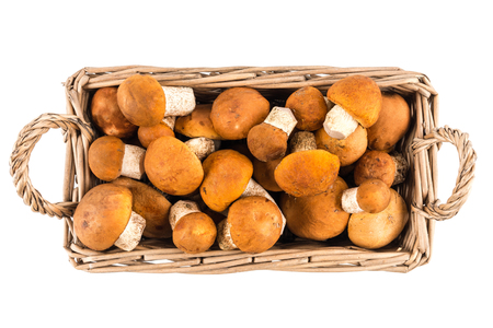 Mushrooms boletus in a basket isolated on white background. Top view.