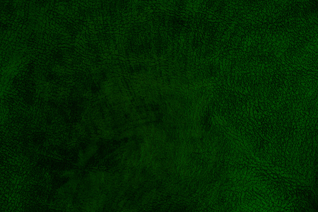 Dark green leather texture. Background and texture. Stockfoto