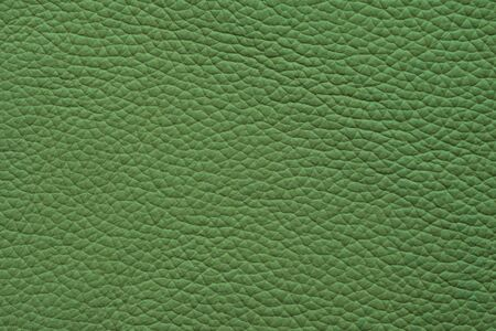 Green leather texture. Background and texture. Top view.