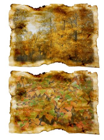 old paper with autumn landscape Stock Photo - 12776727