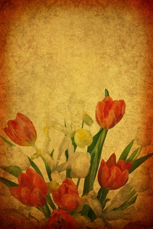 vintage old burnt paper with tulip Stock Photo - 12891734