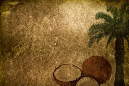 grunge tropical background with space for text or image photo