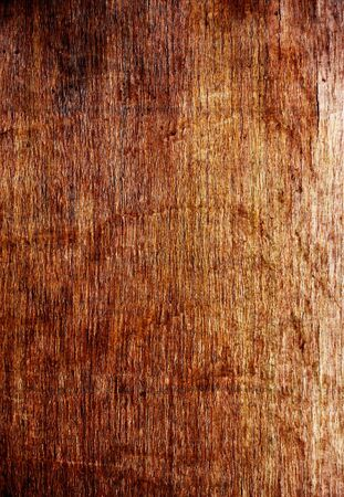 old gunge rusty wooden texture Stock Photo - 13053212