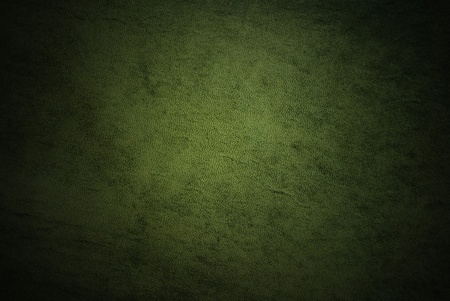 green clothes: Natural qualitative green leather texture. Close up. Stock Photo