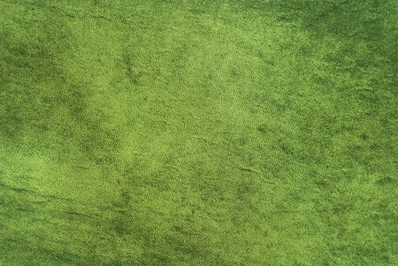 Natural qualitative green leather texture. Close up. photo