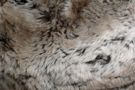 rabbit fur texture of close-up