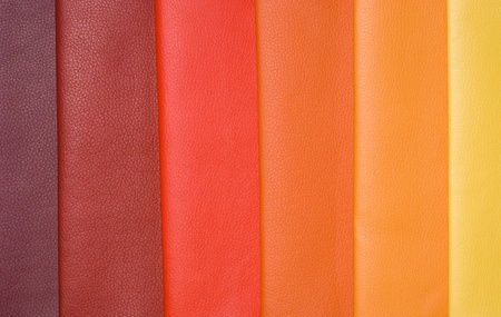 Decorative and fashion leather skin color chart Stock Photo - 13061442