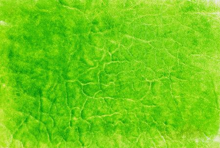 green leather texture  Close up  photo