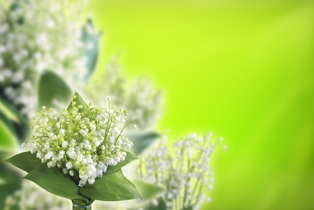 Lily of the valley with sample text  photo