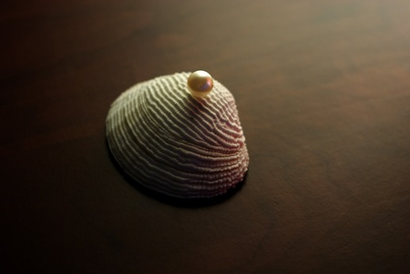 Stylized shell with pearl. Concept - wealth, gift.  Stock Photo