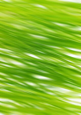 Green abstract background with bler effect photo