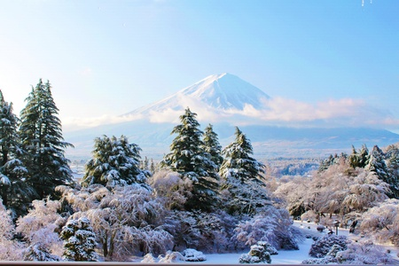 The Sacred Fuji in winter as a view from mountain peak photo