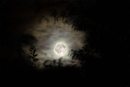 loup garou: lune