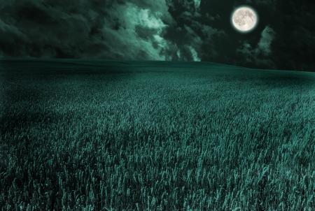 twilight: moon