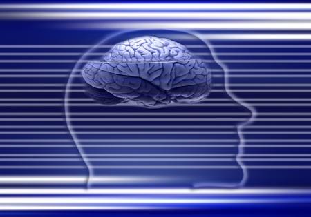 digital brain Stock Photo - 13251305