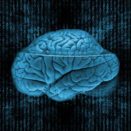 digital brain Stock Photo - 13251707