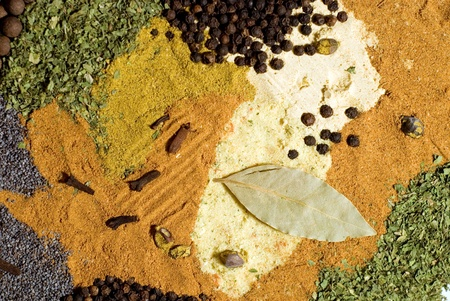Large spice and herb leaf selection  Stock Photo - 13445311
