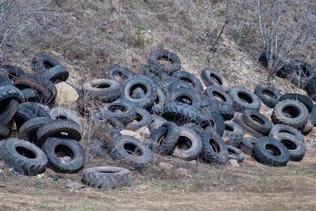 dump: Illegal tire dump in forest