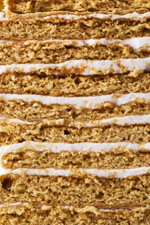 bestrew: texture of a fresh honey cake  Stock Photo