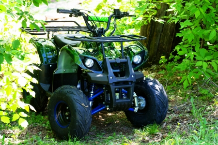cc: camouflage ATV 125 cc  parked in forest Editorial