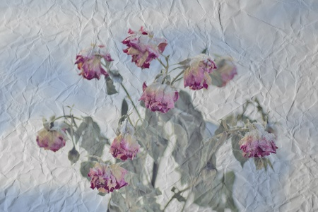 vintage crumpled paper with flowers photo