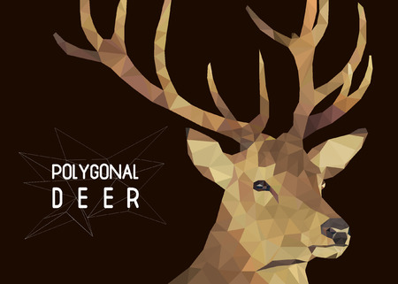 polygonal illustration of deer head Illustration