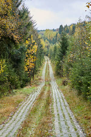 Border strip in the Harz