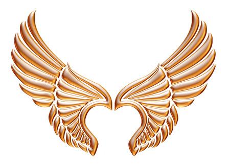 Golden eagle wing isolated on white background. photo
