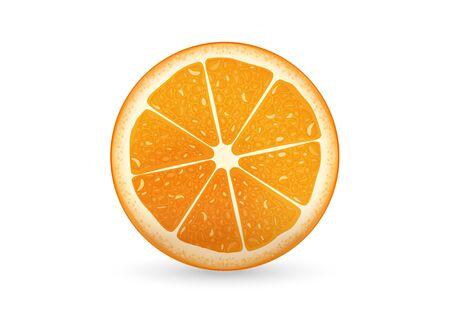 fruttosio: Una illustrazione di fette d'arancia che sembra fresco Vettoriali