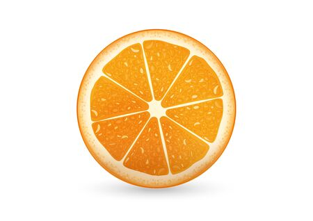 sliced: Una ilustraci�n de rodajas de naranja que se ve fresco