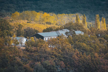 Slate roofs mountain houses in middle of a vivid colorful forest in autumn.
