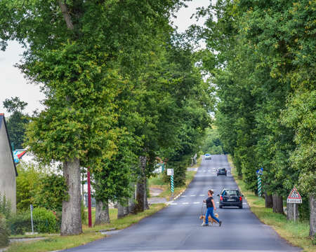 Campénéac, FRANCE - JULY 2, 2017: A woman walking her dog, crosses a road through trees and transited by cars, in the afternoon. Redactioneel