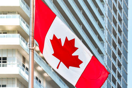 Canadian flag in daylight on a metal and glass office building background. Toronto, Ontario, Canada