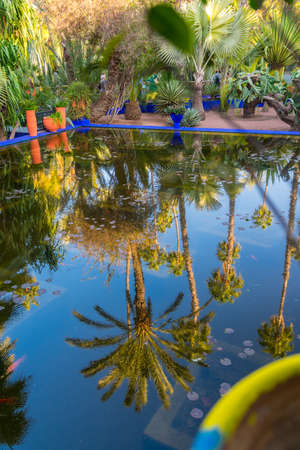 Reflection of a palm tree in a bright blue fountain and a garden of captus and exotic plants. Majorelle Garden. Concept of travel and architecture. Marrakech, Morocco