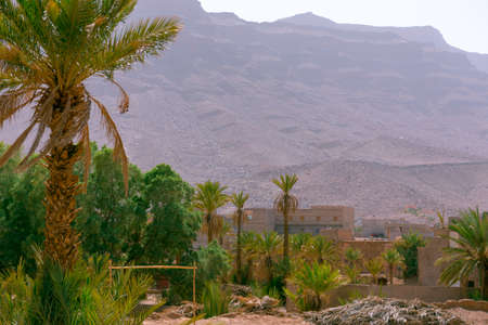 Desert villa with palm trees, houses and mountains in the background. Morocco. High Atlas, Morocco