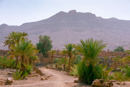 Desert villa  palm trees, houses and mountains in the background. Morocco. High Atlas, Morocco Stockfoto