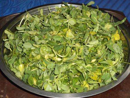 methi: Fresh fenugreek leaves Stock Photo