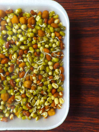 sprouted: Sprouted Lentils