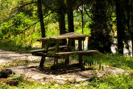 picknick: Old table in the woods