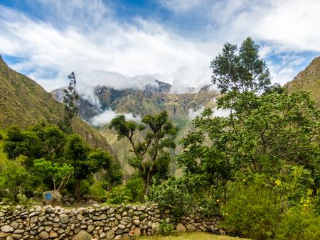 Morning Vista on the inca trail , Machu Picchu, Peru