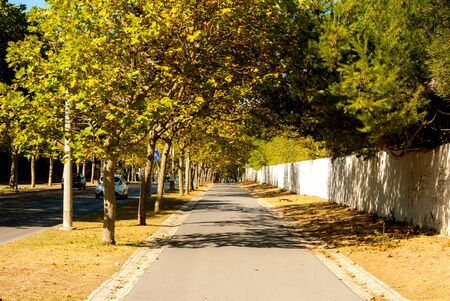Boulevard from Carcavelos station to the beach