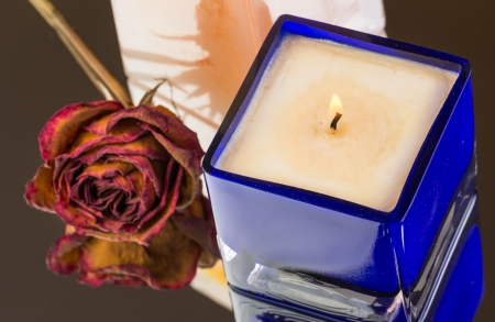 Burned vanilla, peach scented candle with dried rose bud