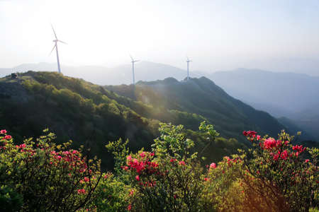 Wind turbines on a mountain Imagens